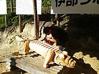 Dsc_0357